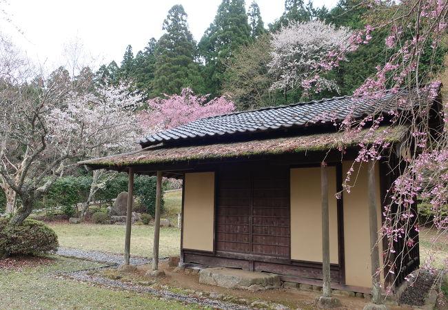 下田歌子勉学所