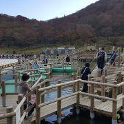 富士山麓の子供向け遊園地