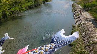 気持ちのいい吊り橋