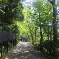 由布院で日帰り温泉!由布岳を眺めながらの露天風呂は最高です