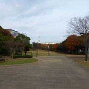 広々とした公園で、公園内に高さ30mの「山田富士」があります。