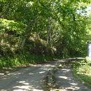 ふるさと2000年の森 ポロトの森キャンプ場