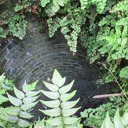 レンガ造りの井戸も残っています