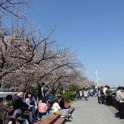 東京スカイツリーと桜のコラボがきれい