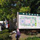 厚木中央公園