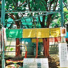 沖縄菩提樹苑