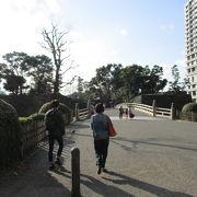 濠や城壁は残っていて江戸風情の雰囲気を味わえます