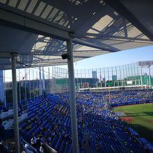 3塁側は日陰です。夏はこちらがいい。