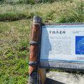 写真:宇佐浜遺跡