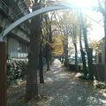 写真:菊田遊歩道