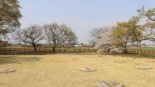 下野国分尼寺跡