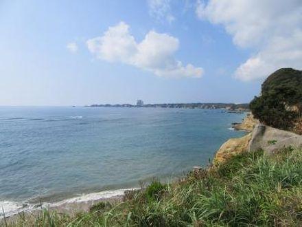 種子島サーフステイ 恵美之湯 写真