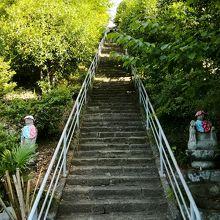 光智山 法泉寺 (札所二十四番)
