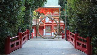 氷川神社の茅の輪くぐりと植木草花市