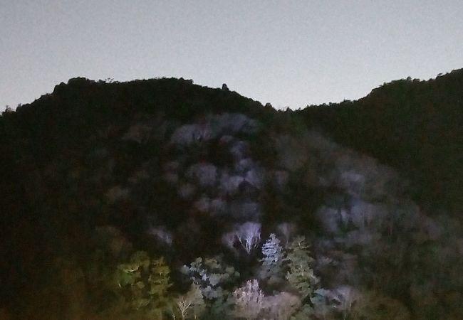 京都・嵐山花灯路