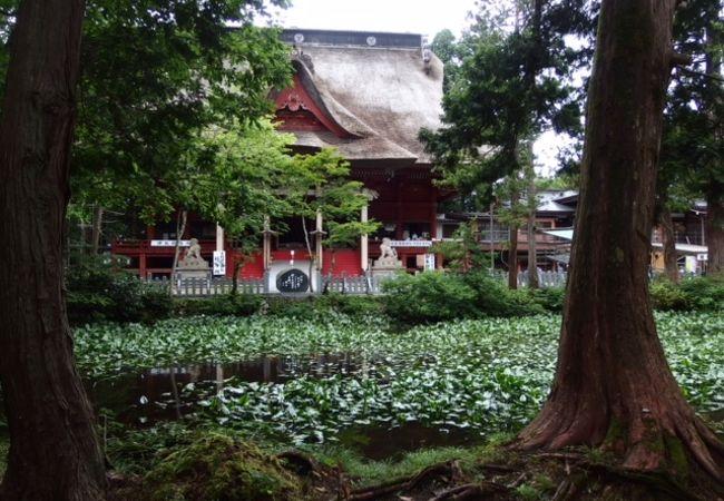 出羽三山神社の鏡池