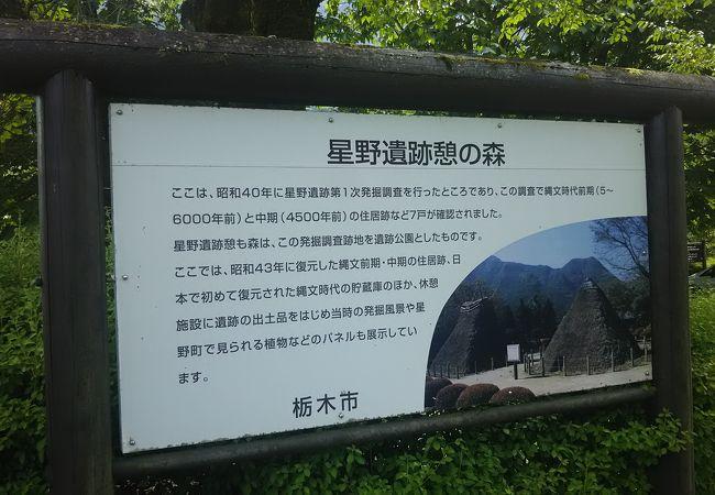星野遺跡公園