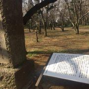 佐倉城址公園の句碑