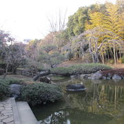 日本庭園で野鳥の囀りを聴きノンビリ癒されます。