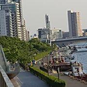 信濃川沿い
