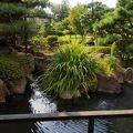 素敵な庭園を望む老舗旅館