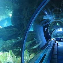 海底トンネル風の通路