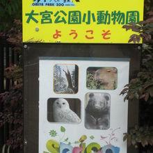 埼玉県大宮公園小動物園の入口に掲げられている案内板です。