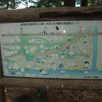 大島キャンプ場 写真