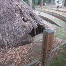 代々木八幡遺跡