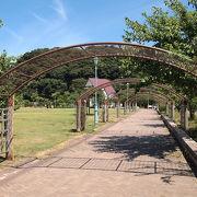 敦賀港前の公園です。