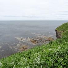 遠浅のため茶色の岩肌が見えます