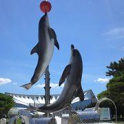 お盆最終日の水族館。