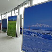 一階 巨大な写真パネル展示