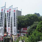 暑い名古屋がもっと熱くなってます