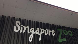 たくさん歩けるシンガポール動物園