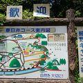 野外キャンプ場(細野キャンプ場)