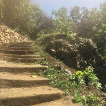 最初だけ急な階段を登ります