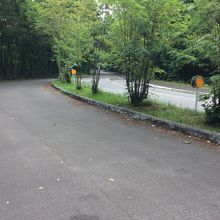 大沼の周回ドライブコース