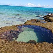 引き潮で岩に溜まったハート型の池が不思議。