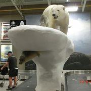 白熊の小さい空港です