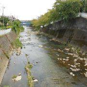 汚染されていたのは過去の話、河道も大幅に変更された