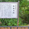 写真:野島貝塚