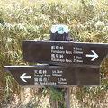 写真:伊豆山稜線歩道