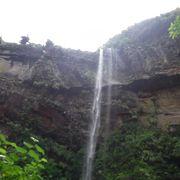 西表島で一番大きな滝
