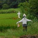 県立座間谷戸山公園