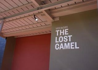 The Lost Camel Hotel 写真