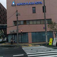 アルピコプラザホテル 写真