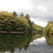 綺麗な池でした