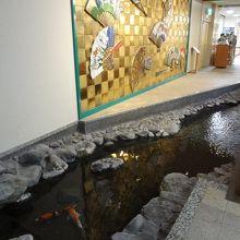 館内に鯉が泳いでいる