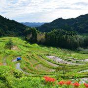 東京から一番近い棚田が鴨川にあった